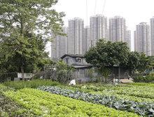 Hands-on Urbanism 1850-2012. Vom Recht auf Grün