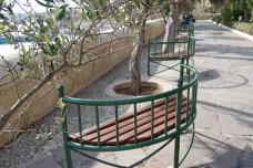 bild_2_bank_in_den_lower_barrakka_gardens_valetta.jpg
