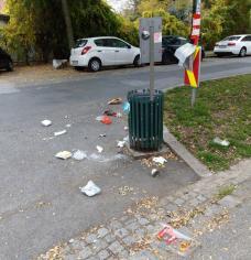 bild_6_nicht_kraehensichere_standardkuebel_in_der_oeverseegasse.jpg