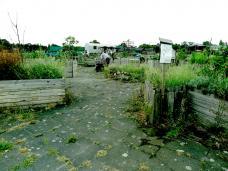 13-tempelhof-gardening.jpg
