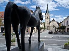 Slovenj-Gradec-Pferd-für-Do