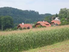 Einfamilienhäuser - Reinhard Seiß URBAN+