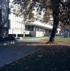 BG Dreihackengasse, Südfassade mit vorgelagerten Pausenterrassen der einzelnen Schulstufen (Foto: Herbert Missoni)