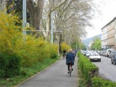 Radweg am Glacis, entlang des Grazer Stadtparks. Foto: Stadt Graz