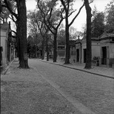 Abb. 20. Jim Morrison (nicht zufällig gefunden, dann zu erschöpft, noch einmal zurückzugehen); Frederic Chopin (zufällig gefunden); Edith Piaf (gefunden)