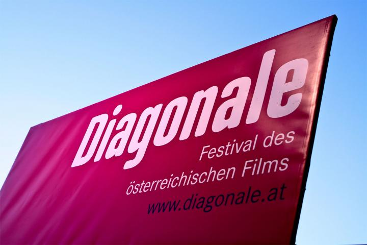 diagonale fahne 2014