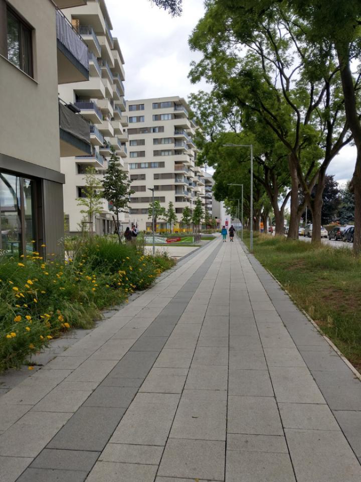bild_1-_campus_eggenberg_boulevard.jpg