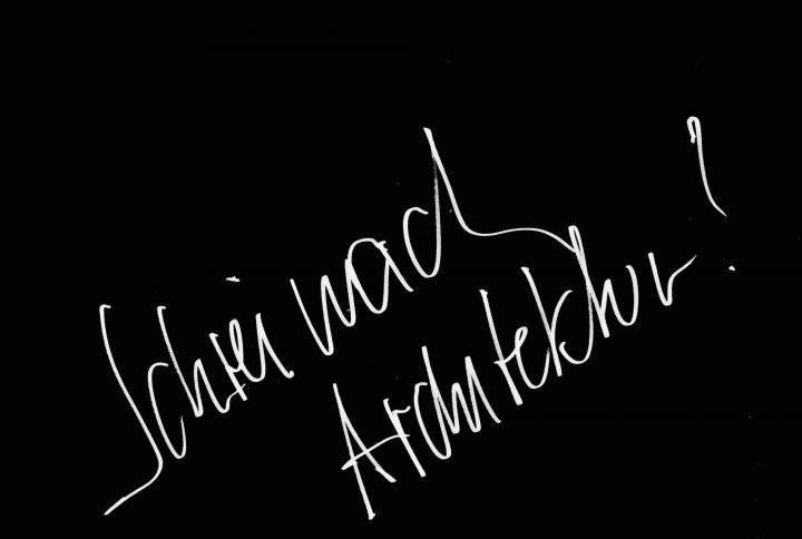 schrei_nach_architektur._ss_2013.jpg
