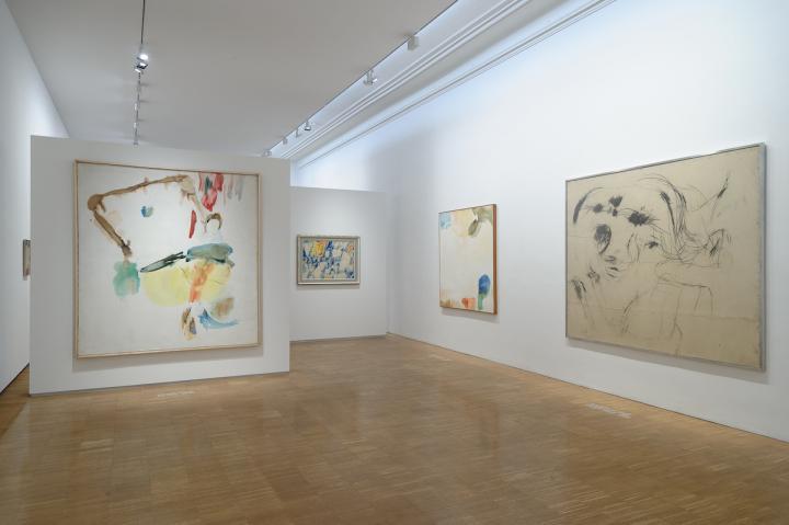 Ausstellungsansicht,  Foto: Universalmuseum Joanneum/N. Lackner