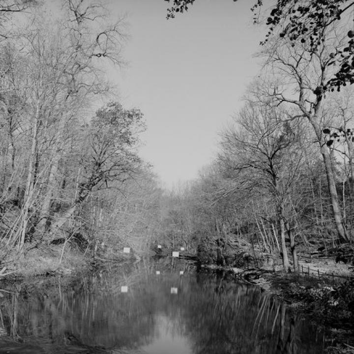 Zita Oberwalder, Bronx River, 2010 Courtesy die Künstlerin